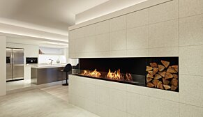 Flex 68LC.BX2  - In-Situ Image by EcoSmart Fire
